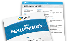 COBIT5 Implementation Flier
